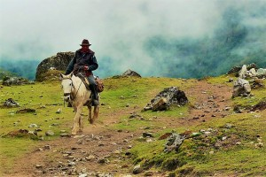 A cowboy riding a horse in the mountains